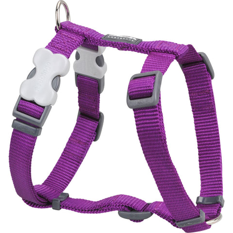Red Dingo Classic Dog Harness - Purple