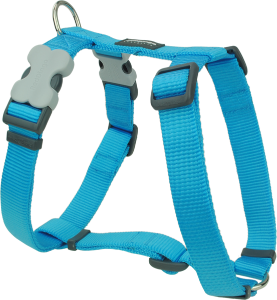 Red Dingo Classic Dog Harness - Turquoise