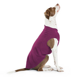 Gold Paw Stretch Fleece Dog Coat - Eggplant