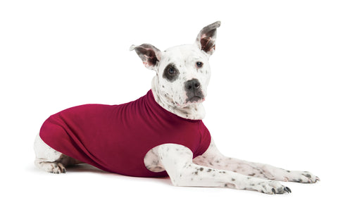Gold Paw Stretch Fleece Dog Coat - Garnet