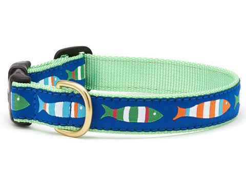 Up Country Funky Fish Dog Collar