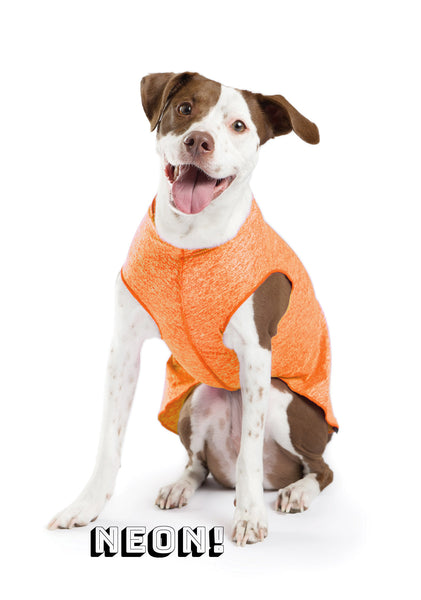 Sun Shield Dog Tee - Neon Orange