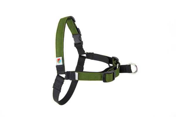 Linden Front-Leash Attachment Dog Harness - Olive