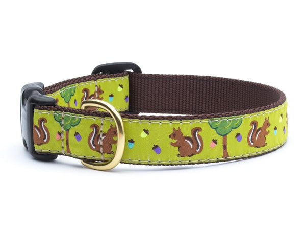 Up Country Nuts Dog Collar