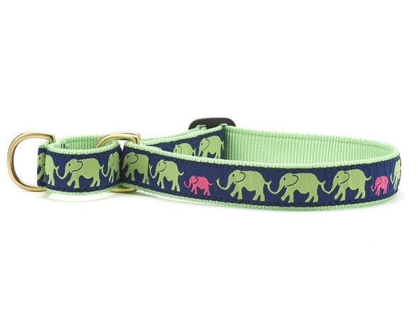Up Country Leader of the Pach Martingale Dog Collar