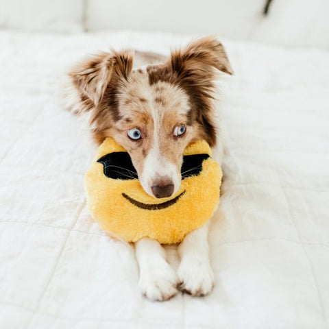 Squeakie Emojiz Dog Toy - Cool Dude