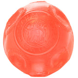 Planet Dog Orbee-Tuff Lunee Ball Dog Toy
