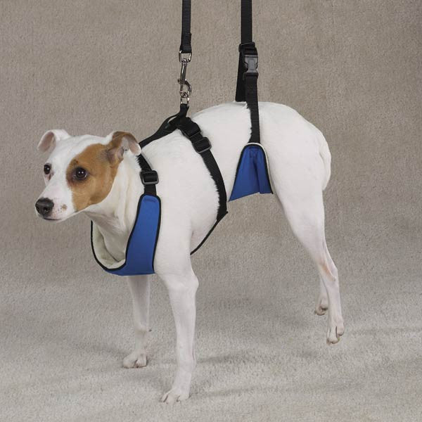 Lift Amp Lead Dog Mobility Harness Puplife Dog Supplies