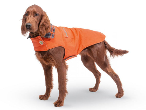Up Country Orange Field Dog Coat with Plaid Trim