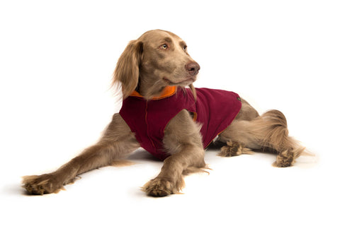 Duluth Double Fleece Pullover Dog Sweater - Garnet/Orange