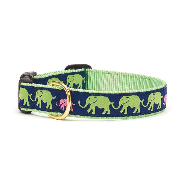 Up Country Leader of the Pach Dog Collar
