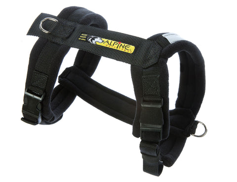 Urban Trail Adjustable Padded Dog Harness - Black