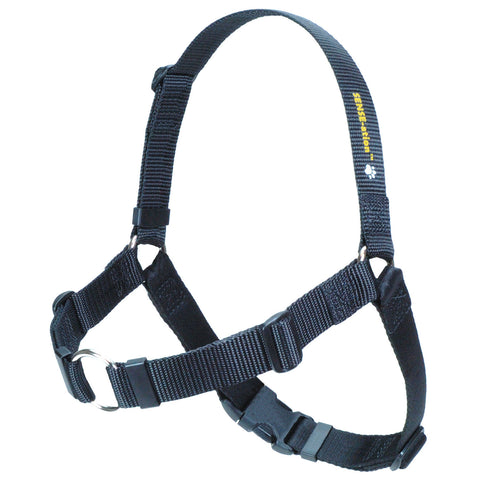 SENSE-ation Dog Harness - Black