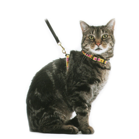 Up Country Cat Harness
