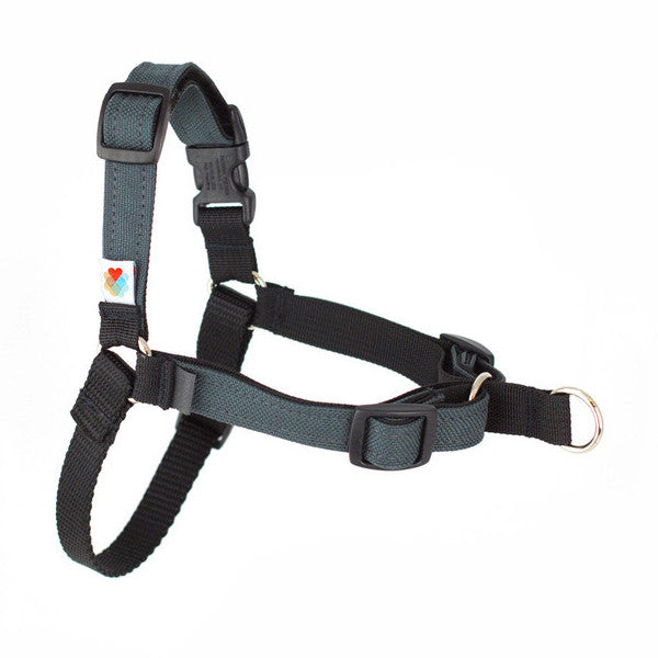 Linden Front-Leash Attachment Dog Harness - Charcoal