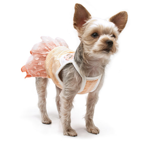 Sweet Citrus Dog Dress