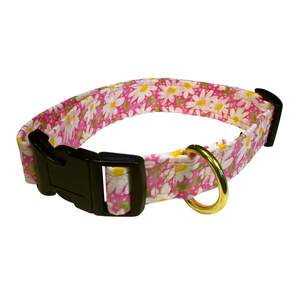 Elmo's Closet Daisies On Pink Dog Collar