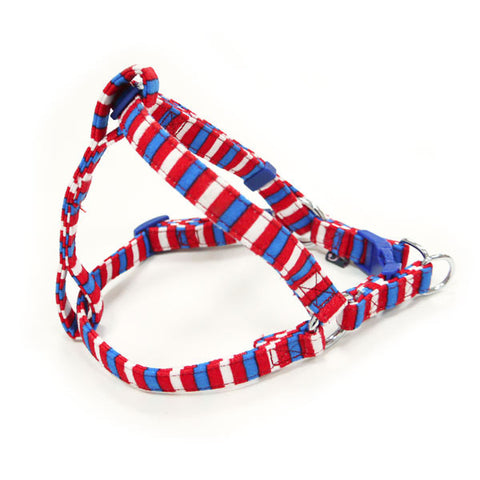 Dogo EasyCLICK Harness - Fun Stripes
