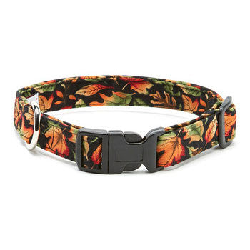 Elmo's Closet Autumn Glo Fall Leaves Dog Collar