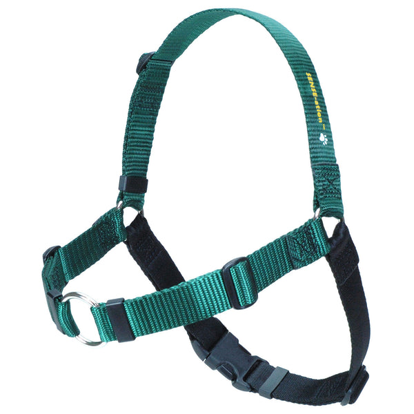 SENSE-ation Dog Harness - Green