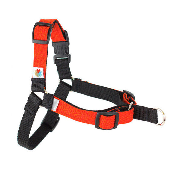 Linden Front-Leash Attachment Dog Harness - Orange