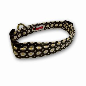 Elmo's Closet Dotted Daisies Dog Collar