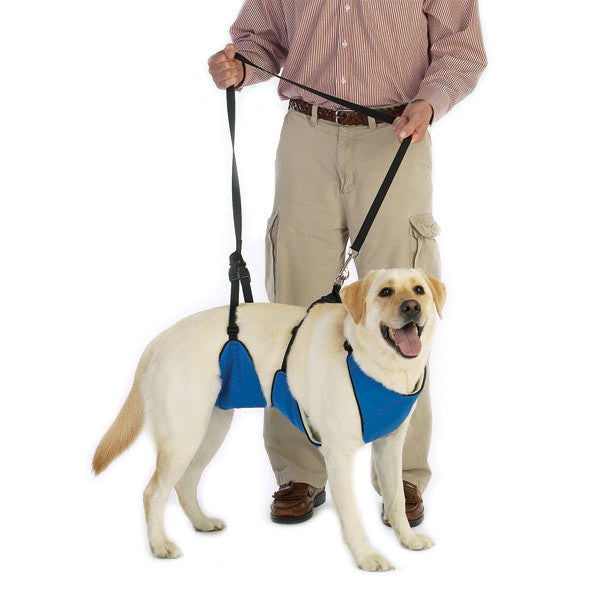 Lift & Lead Dog Mobility Harness