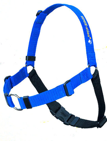 SENSE-ation Dog Harness - Blue