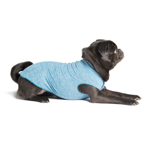 Gold Paw Sun Shield Dog Tee - Ocean Heather