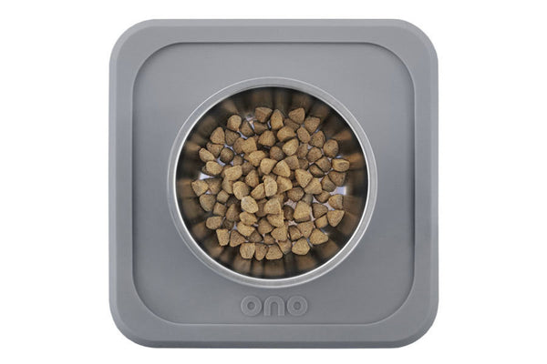 The Good Bowl Single Pet Feeder 16 oz - Charcoal