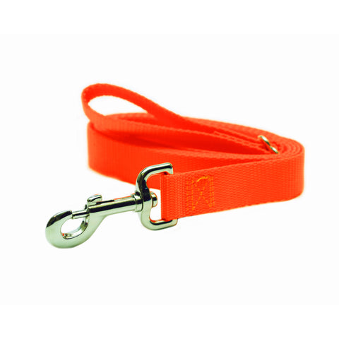 Rita Bean Dog Leash - Nylon Webbing (Neon Orange)