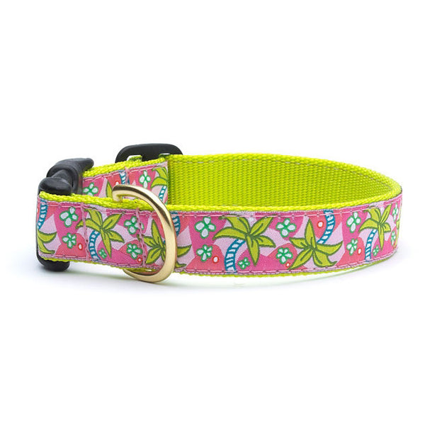 Up Country Pink Palms Dog Collar