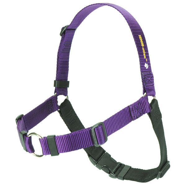 SENSE-ation Dog Harness - Purple