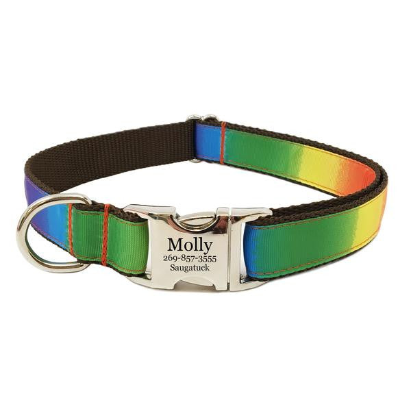 Rita Bean Engraved Buckle Personalized Dog Collar - Rainbow Stripe
