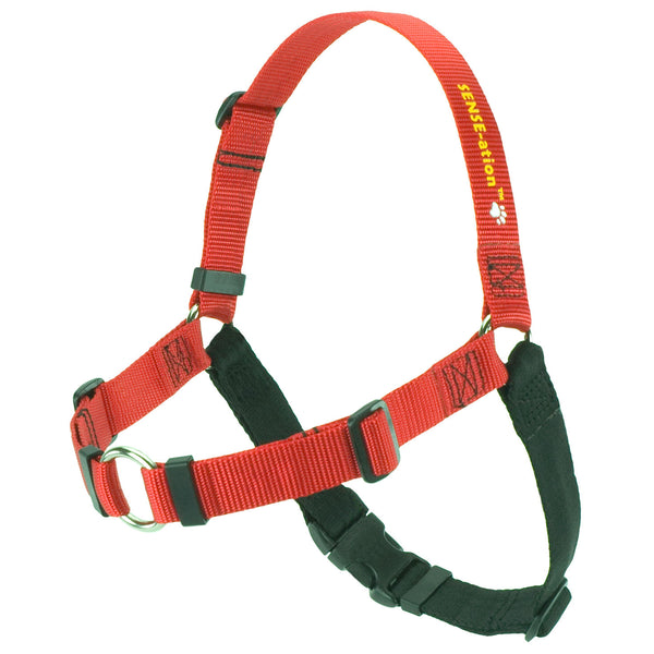 SENSE-ation Dog Harness - Red