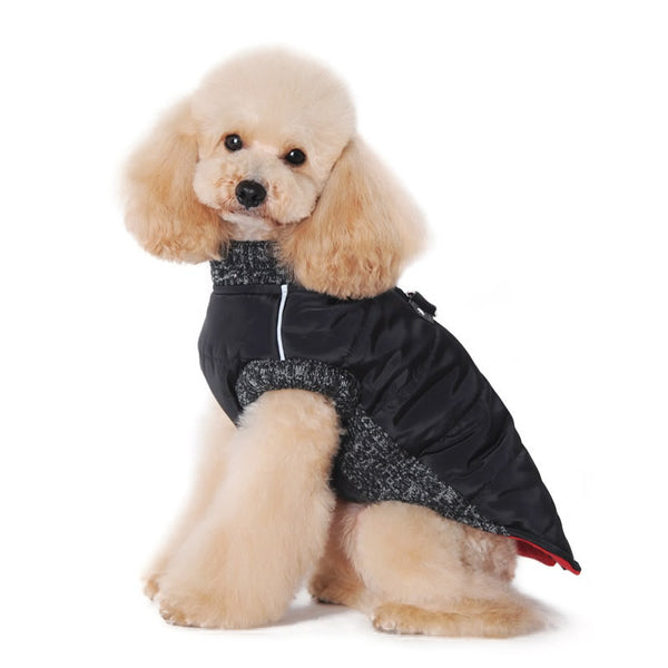 Runner Dog Coat Black Puplife Dog Supplies