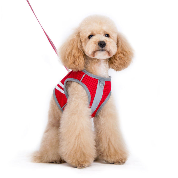 SnapGO Basic Dog Harness - Red