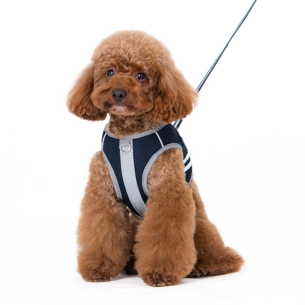 SnapGO Basic Dog Harness - Navy