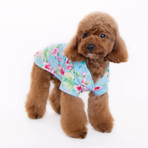 Tropical Island Dog Shirt - Blue