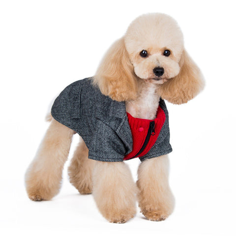 Tweed Blazer Dog Coat