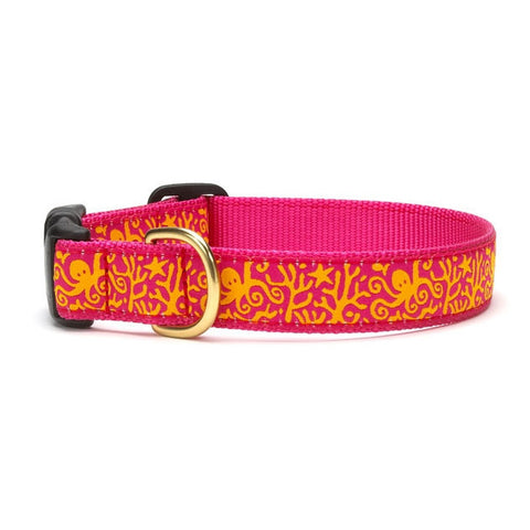 Up Country Under the Sea Dog Collar