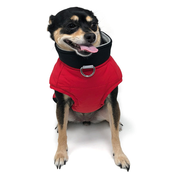Urban Runner Dog Coat - Red