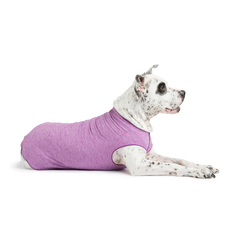 Gold Paw Sun Shield Dog Tee - Violet Heather