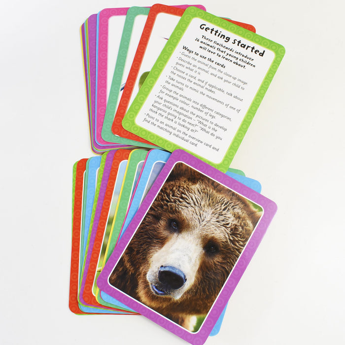 3+ - Flashcards ABC,123,Animals,Colour Get Set Go Pack