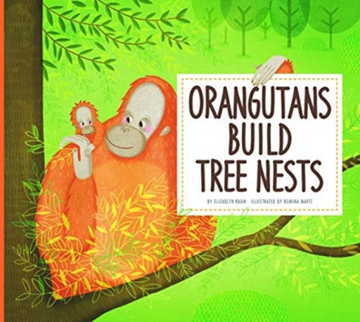 Orangutans Build Tree Nests : Animal Builders