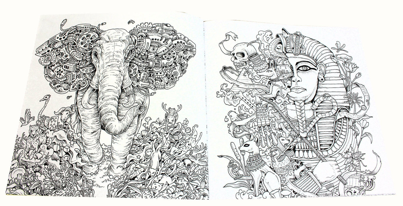 Animorphia Imagimorphia and Mythomorphia 3 Extreme Colouring Books - Paperback - Kerby Rosanes - Books2Door