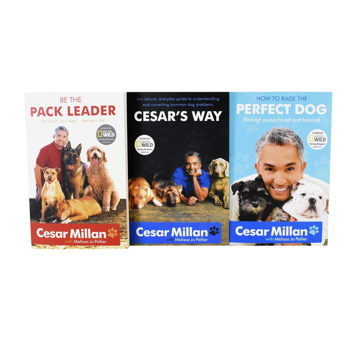 Non Fiction - Cesar Millan 3 Books Collection (How To Raise The Perfect Dog, Cesar's Way, Be The Pack Leader) - Non Fiction - Paperback