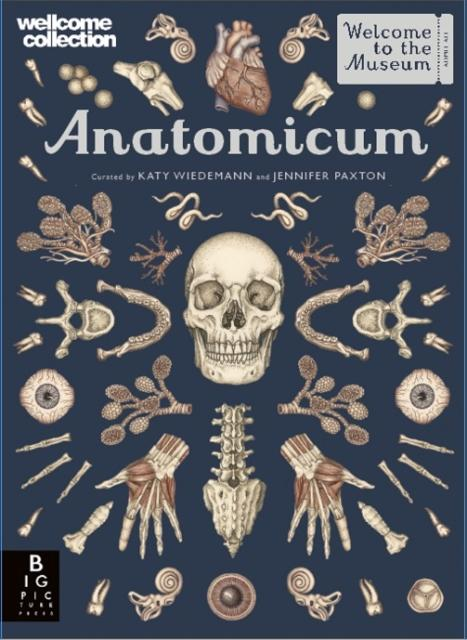 Popular Titles - Anatomicum