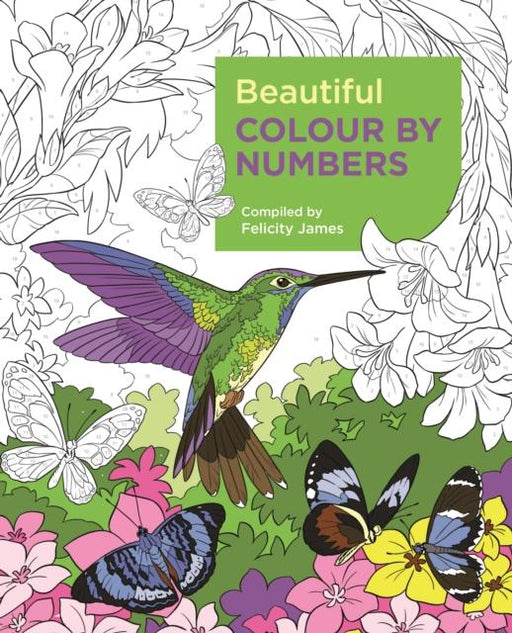 Popular Titles - Beautiful Colour By Numbers