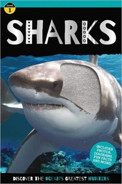 Popular Titles - Go Wild Shark